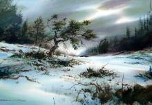 Marke Simmons - Snow Covered Landscape