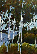 Bill Townsend Birch Trees in Algonquin Park, Ontario