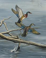 Norman Kelly Pair of Wood Ducks