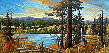 Rod Charlesworth Fading Light, Courtenay Lake