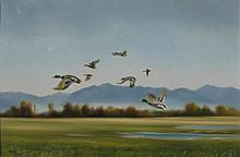 Norman Kelly Rising Mallards