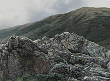 Richard Davis Outcrop