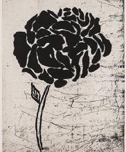 Donald Baechler: Five Flowers HS/N Etching