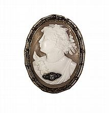 Shell Cameo Brooch/Pendant W1213