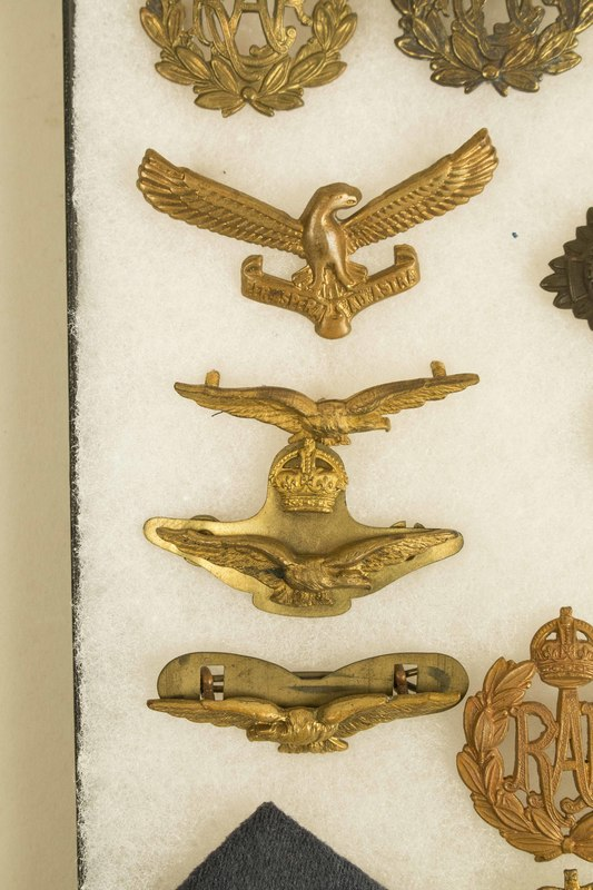 RAF, Fleet Air Arm, and Commonwealth Air Force Wings and Bad