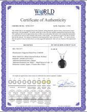 Lot 4021: 14K White Gold 0.62 ct Black Diamond Solitaire Necklace - REF-42G2M-WJ13277