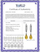 Lot 4079: Genuine 3 ctw Citrine Earrings Jewelry 14KT White Gold - REF-24P3H