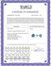 Lot 4130: Genuine 3.1 ctw Blue Topaz Earrings Jewelry 14KT Rose Gold - REF-23W9Y