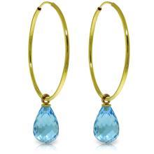 Genuine 4.5 ctw Blue Topaz Earrings Jewelry 14KT Yellow Gold - REF-26A2K