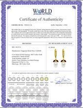 Lot 3054: Genuine 9 ctw Garnet & Pearl Earrings Jewelry 14KT Yellow Gold - REF-39Z3N