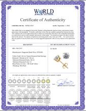 Lot 3131: 14K Yellow Gold 1.04 ctw Natural Diamond Stud Earrings - REF-141F9N-WJ13327