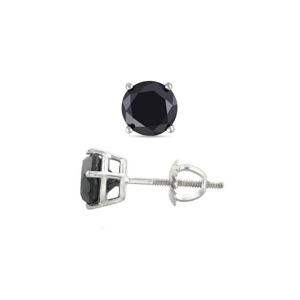 14K White Gold 2.02 ctw Black Diamond Stud Earrings - REF-119R3X-WJ13341