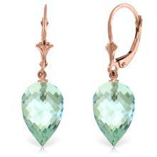 Genuine 22.5 ctw Blue Topaz Earrings Jewelry 14KT Rose Gold - REF-52M2T