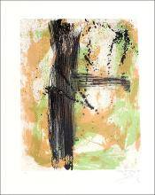 """James Bohary Signed Limited Edition Lithograph Entitled """"Summer Fall"""""""
