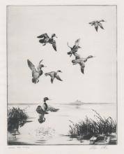 Alec Stern Large Etching [Along the River No.1]