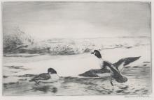 Roland Clark Etching [Ducks]