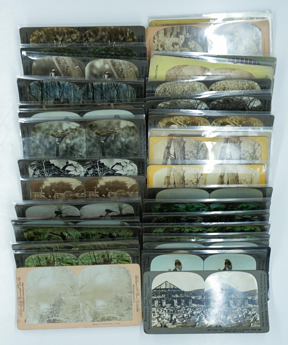 Lot 371: Antique Stereoviews [Wildlife] (45)