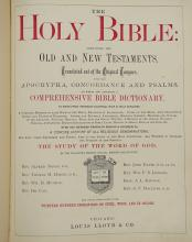 Lot 309B: The Holy Bible 1876