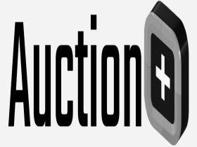 Auction Plus, Inc.